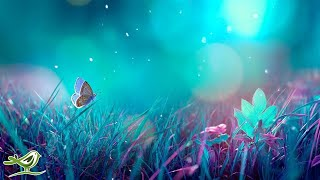 Video Relaxing Piano Music - Beautiful Music for Sleeping, Studying & Relaxation MP3, 3GP, MP4, WEBM, AVI, FLV Mei 2019