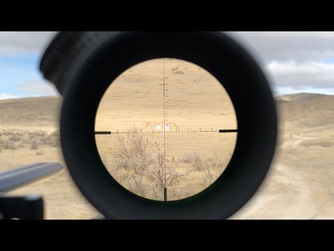 How Much Zoom Do You Need for Long-Range Shooting