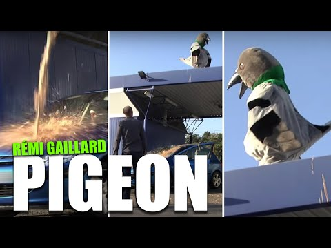 Giant Pigeon at a Car Wash Prank