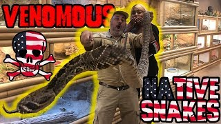 Jay and Kaye's  Rattlesnakes Got Talent by Prehistoric Pets TV