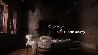 会いたい / Acid Black Cherry Video