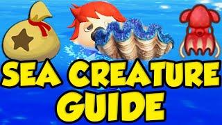 ANIMAL CROSSING NEW HORIZONS SEA CREATURE GUIDE! Animal Crossing Summer Update Money Making! by Verlisify