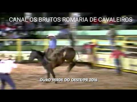 RODEIO EM CAVALOS CUTIANO EM OURO VERDE  DO OESTE-PR