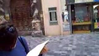Francia Fisarmonica