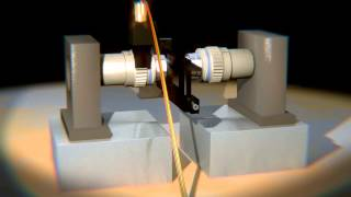 Optical Trapping Virometry