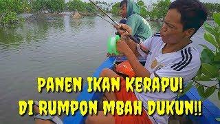 Video Mancing Di Sarang Ikan Kerapu / Tambak jebol Pekalongan MP3, 3GP, MP4, WEBM, AVI, FLV April 2019