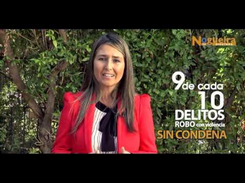 Diputada Nogueira y Control Preventivo de Identidad