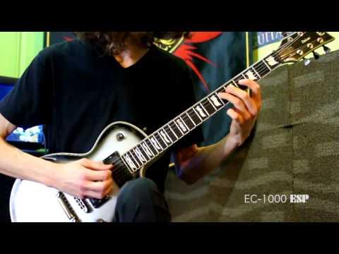 Jack Fliegler (Singularity): Playthrough on LTD EC-1000