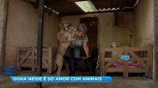 Aposentada de Araçoiaba da Serra cuida de mais de 100 animais abandonados