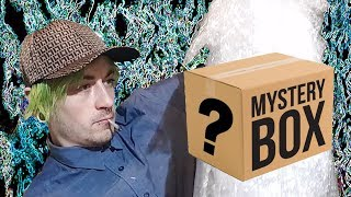 Unboxing a $500 Stoner MYSTERY BOX