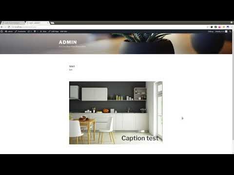 How to make image caption in WordPress
