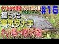 【#15】ナスDの大冒険YouTube版!南米アマゾン 獲った電気ウナギその場で喰らう編/Crazy Director 's  Gigantic Electrical eel Caught