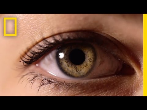 occhi: specchio della nostra salute
