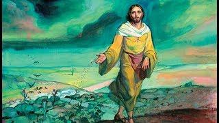 """Leia o Evangelho deste domingo e em seguida escute a homilia do Padre Rodrigo Maria:Anúncio do Evangelho (Mt 13,1-23)— O Senhor esteja convosco.— Ele está no meio de nós.— PROCLAMAÇÃO do Evangelho de Jesus Cristo + segundo Mateus.— Glória a vós, Senhor.1Naquele dia, Jesus saiu de casa e foi sentar-se às margens do mar da Galileia.2Uma grande multidão reuniu-se em volta dele. Por isso, Jesus entrou numa barca e sentou-se, enquanto a multidão ficava de pé, na praia.3E disse-lhes muitas coisas em parábolas: """"O semeador saiu para semear. 4Enquanto semeava, algumas sementes caíram à beira do caminho, e os pássaros vieram e as comeram.5Outras sementes caíram em terreno pedregoso, onde não havia muita terra. As sementes logo brotaram, porque a terra não era profunda. 6Mas, quando o sol apareceu, as plantas ficaram queimadas e secaram, porque não tinham raiz.7Outras sementes caíram no meio dos espinhos. Os espinhos cresceram e sufocaram as plantas.8Outras sementes, porém, caíram em terra boa, e produziram à base de cem, de sessenta e de trinta frutos por semente. 9Quem tem ouvidos, ouça!""""10Os discípulos aproximaram-se e disseram a Jesus: """"Por que falas ao povo em parábolas?""""11Jesus respondeu: """"Porque a vós foi dado o conhecimento dos mistérios do Reino dos Céus, mas a eles não é dado. 12Pois à pessoa que tem será dado ainda mais, e terá em abundância; mas à pessoa que não tem será tirado até o pouco que tem.13É por isso que eu lhes falo em parábolas: porque olhando, eles não veem, e ouvindo, eles não escutam nem compreendem. 14Desse modo se cumpre neles a profecia de Isaías: 'Havereis de ouvir, sem nada entender. Havereis de olhar, sem nada ver. 15Porque o coração deste povo se tornou insensível. Eles ouviram com má vontade e fecharam seus olhos, para não ver com os olhos, nem ouvir com os ouvidos, nem compreender com o coração, de modo que se convertam e eu os cure'.16Felizes sois vós, porque vossos olhos veem e vossos ouvidos ouvem. 17Em verdade vos digo, muitos profetas """