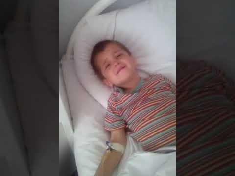 Четырехлетний мальчик умирает от укуса гадюки в Волгограде - DomaVideo.Ru