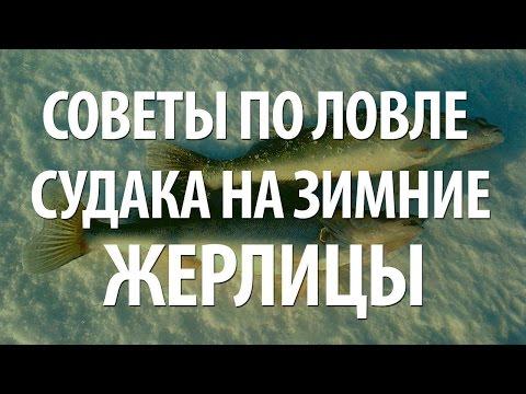 Михайловское. Ловля судака на тюльку