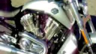 6. 2009 Harley-Davidson V-Rod Muscle VRSCF