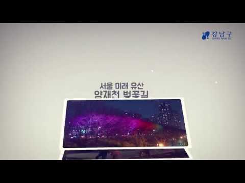서울미래유산 양재천 벚꽃길