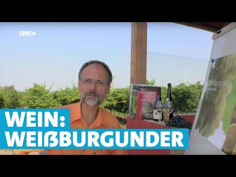 Werner erklärt Wein: Weißburgunder