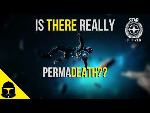 Star Citizen | Is there really Perma death?