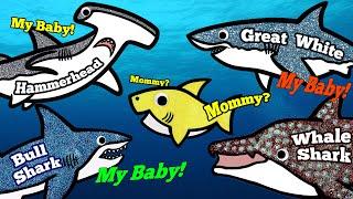 Video Sea Animals for Kids, Learn Names and Sounds   Great White Shark, Whale Shark, Hammerhead Shark MP3, 3GP, MP4, WEBM, AVI, FLV Januari 2019