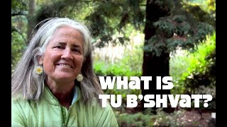 What is Tu B'shvat?