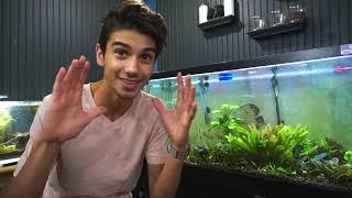My 90 Gallon Ecosystem!!! Aquarium by  Challenge the Wild