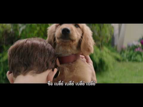 A Dog's Purpose | Flim Clip 1 | Thai sub
