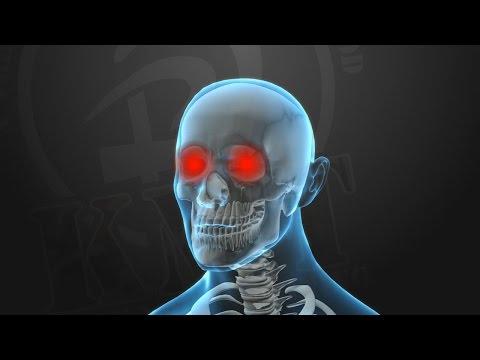 KRAV MAGA TRAINING • Knockout Pressure Points (part 5 of 5)