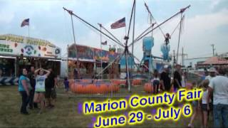 Marion County Fair 2013