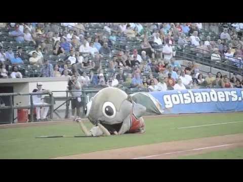 膽小勿看!球場竟然出現2公尺鯊魚生吞活人!!