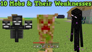 Video Minecraft - 10 Mobs & Their Weaknesses MP3, 3GP, MP4, WEBM, AVI, FLV Juni 2019
