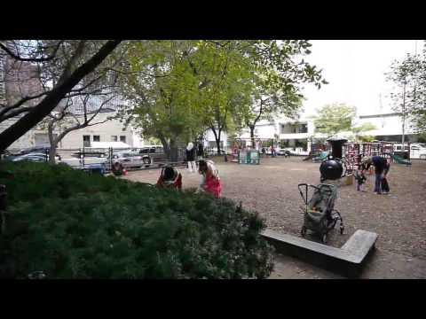 Urban oases: the parks of Streeterville