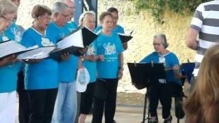 (CCI) Centro de convivência do Idoso de Franca-sp Turma do professor Sérgio CCI Franca-sp Cantando a música Chalana.