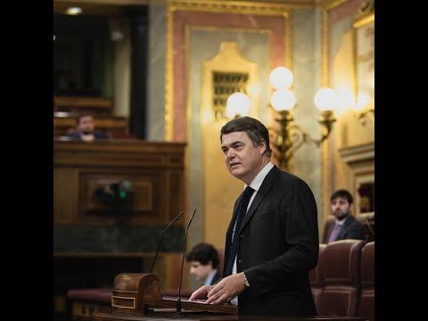 Intervención de Carlos Rojas en el Pleno del Congreso