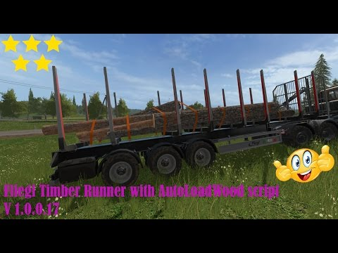 Fliegl Timber Runner with Auto Load Wood Script v1.1.0.17