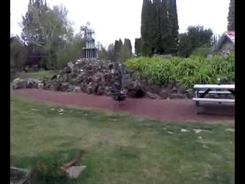 Peterson Rock Garden - Flashy Peacock