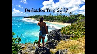 Exploring 2 weeks the paradise. We started our trip in the south of the isalnd (Dover- Worthing- and Miami Beach). Than we went to the east cost (Bottom Bay, ...