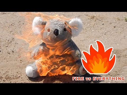 Fire vs Teddy bear