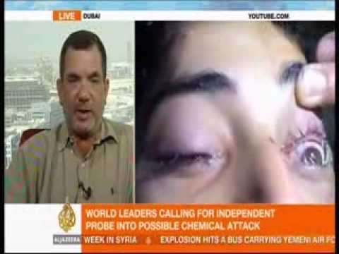 Interview with Dr. Theodore Karasik regarding potential U.S. airstrikes on Syria
