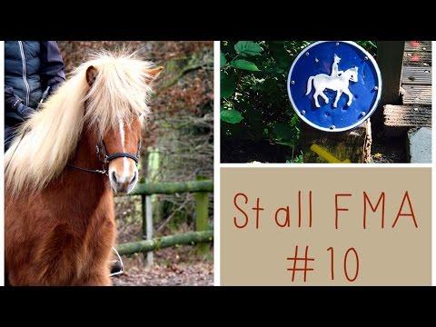 Stall-FMA #10 / Lifestyle / LadyLandrand + die Verantwortung wenn man Tiere hat!