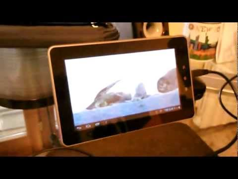 Video of Remote Video Streaming