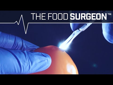 The Food Surgeon Dissecting a Bell Pepper