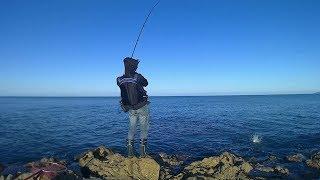 ムーチョ・ルチアでイナダ釣り