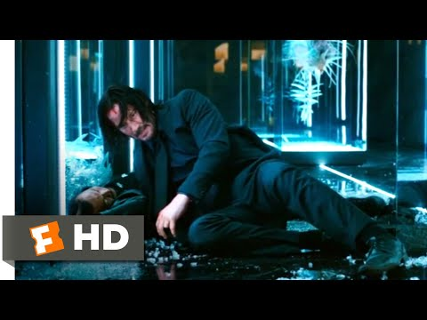 John Wick: Chapter 3 - Parabellum (2019) - Shinobi Assassin Fight Scene (9/12) | Movieclips