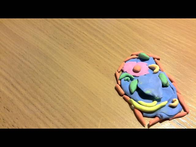 как сделать клетку по биологии из пластилина
