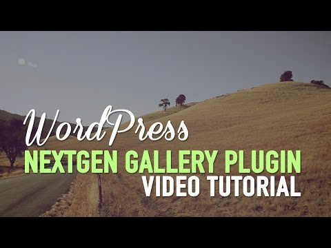 Video WordPress Gallery Plugin - NextGEN Gallery Plugin download in MP3, 3GP, MP4, WEBM, AVI, FLV January 2017