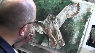 Time Lapse Pastel Drawing Lesson, Owl Part 4, Final Part.