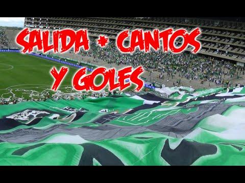 Frente Radical Verdiblanco | Deportivo cali vs Equidad 2-0 Liga aguila 8-FEB-2015 - Frente Radical Verdiblanco - Deportivo Cali