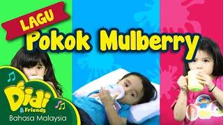 Video Pokok Mulberry Didi & Friends ft Bella, Mika, Noah MP3, 3GP, MP4, WEBM, AVI, FLV Maret 2019
